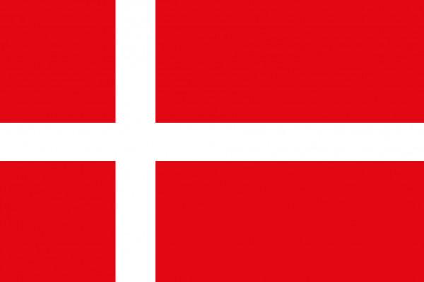 allpa Dänische Flagge 30x45cm